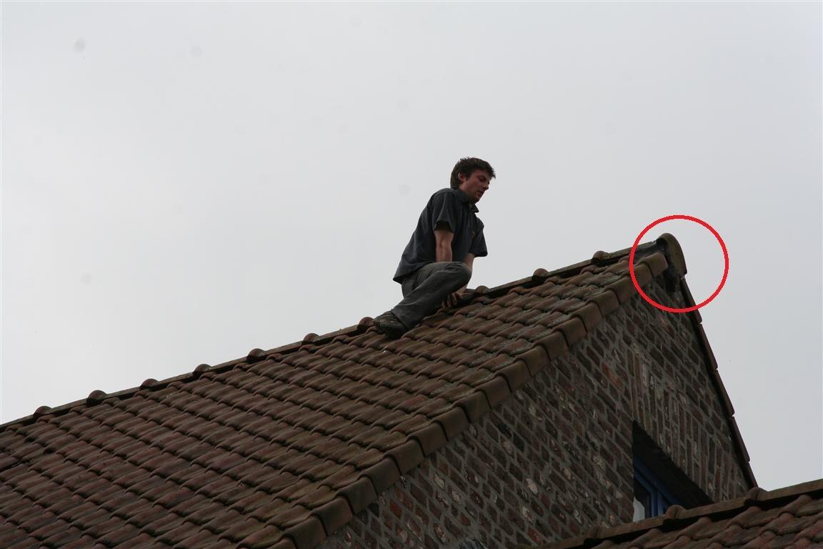 Spreeuw vast op dak...