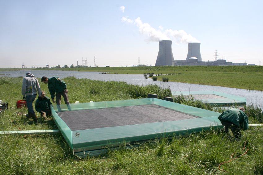 Natuurhulpcentrum plaatst visdiefvlotjes in Doel...