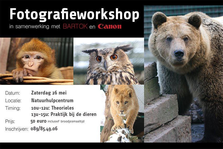 Fotografieworkshop...