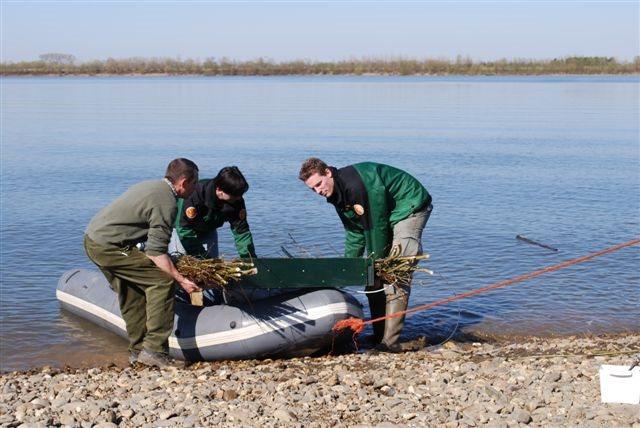 Natuurhulpcentrum plaatst 5 visdiefvlotjes in Stokkem